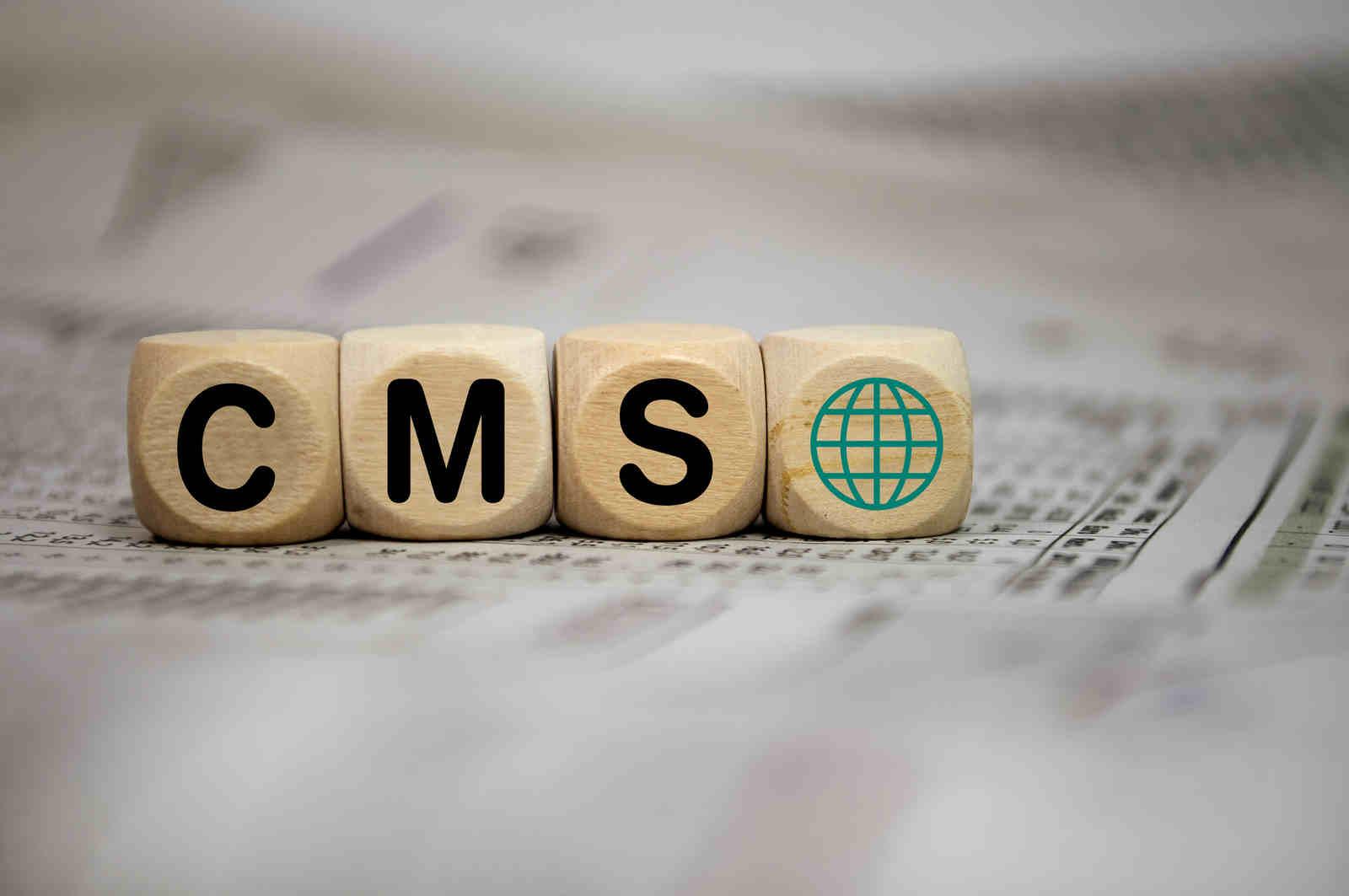Jaki CMS wybrać do sklepów internetowych